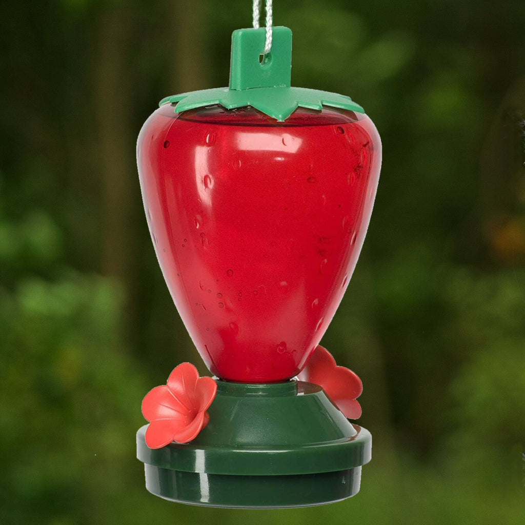 Strawberry Hummingbird Feeder - Plastic 12 oz