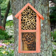 Dual Chamber Beneficial Insect House