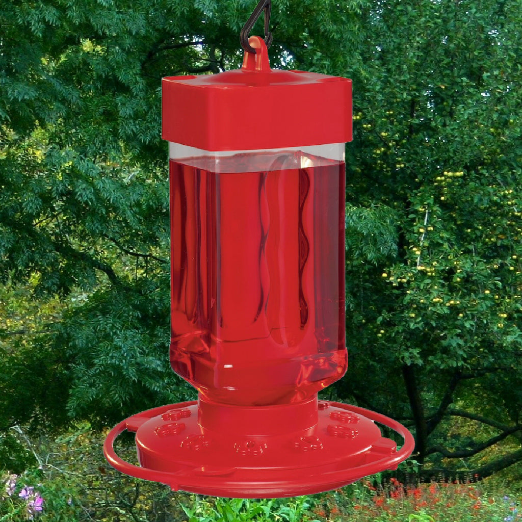 Wide Mouth Hummingbird Feeder 32 oz