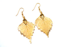 Real Birch Leaf Gold Earrings