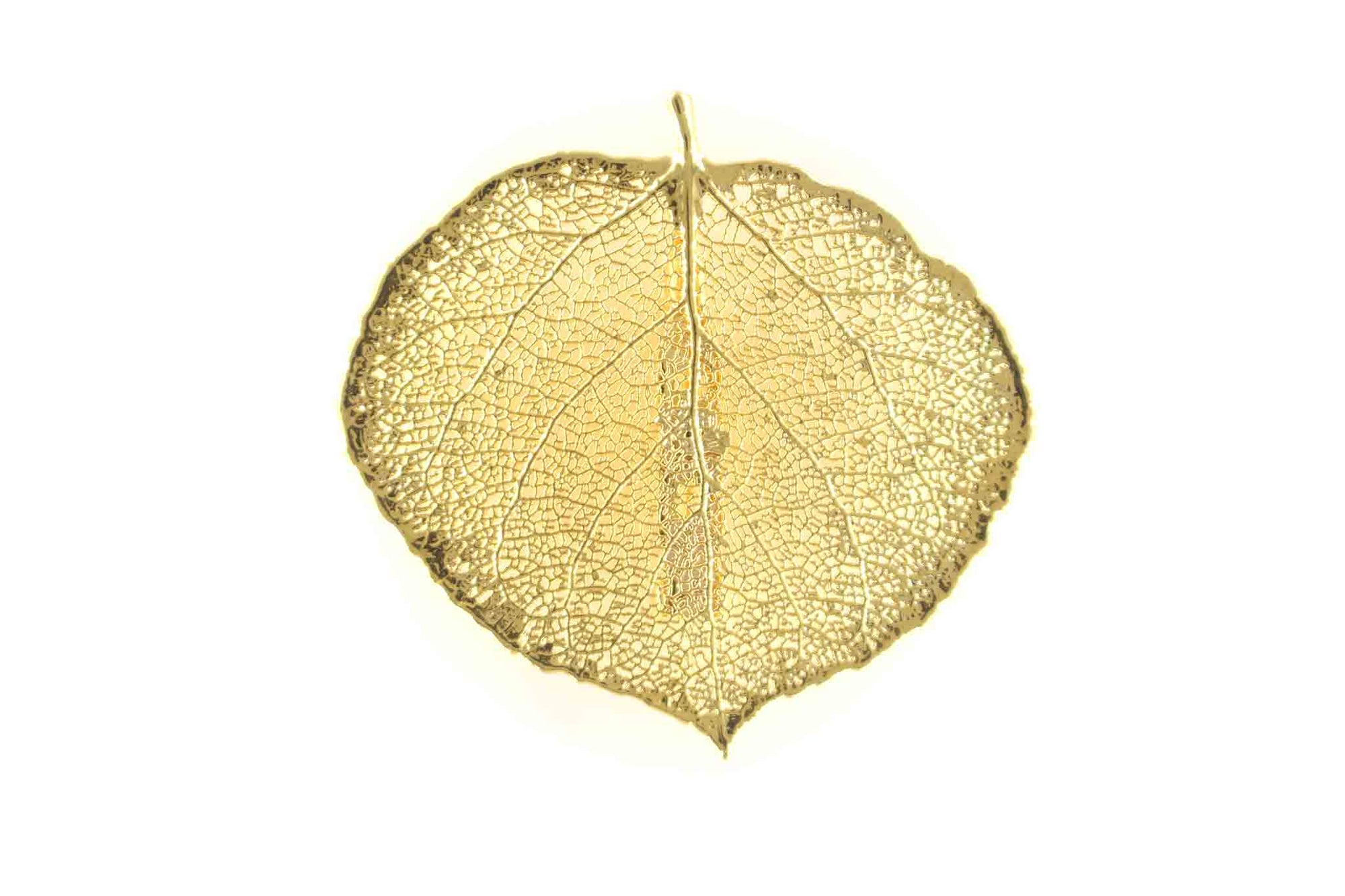 Real Aspen Leaf Brooch in Gold - Arborvita