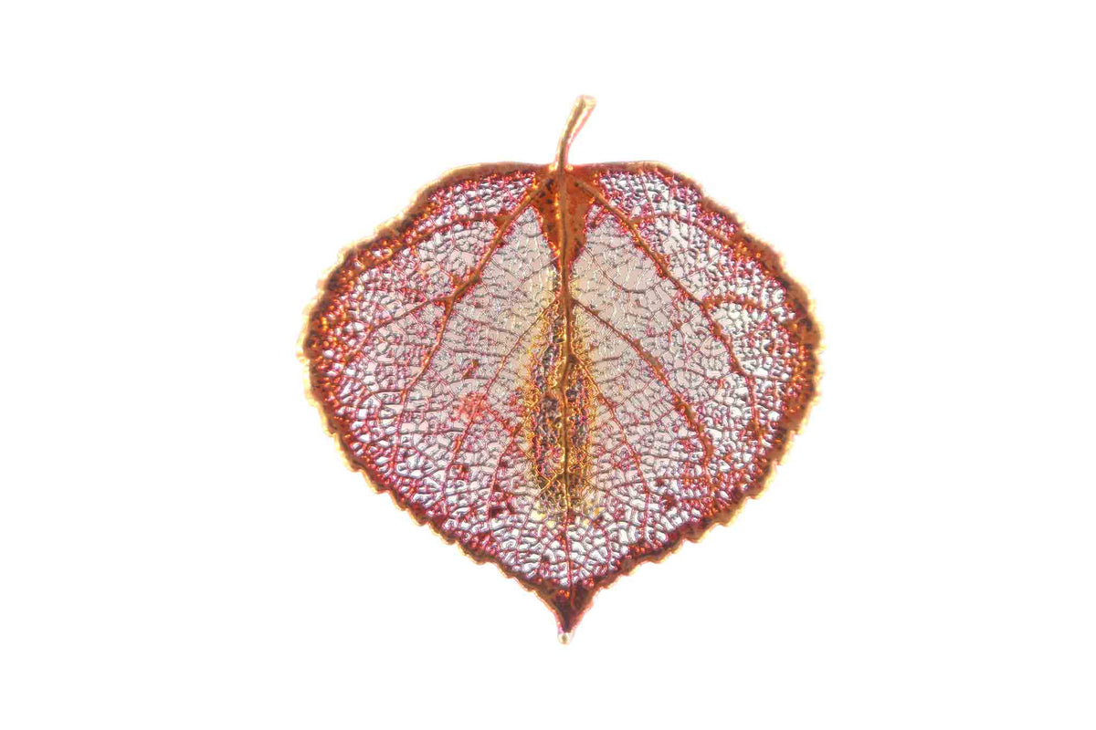 Real Aspen Leaf Brooch In Iridescent Copper - Arborvita