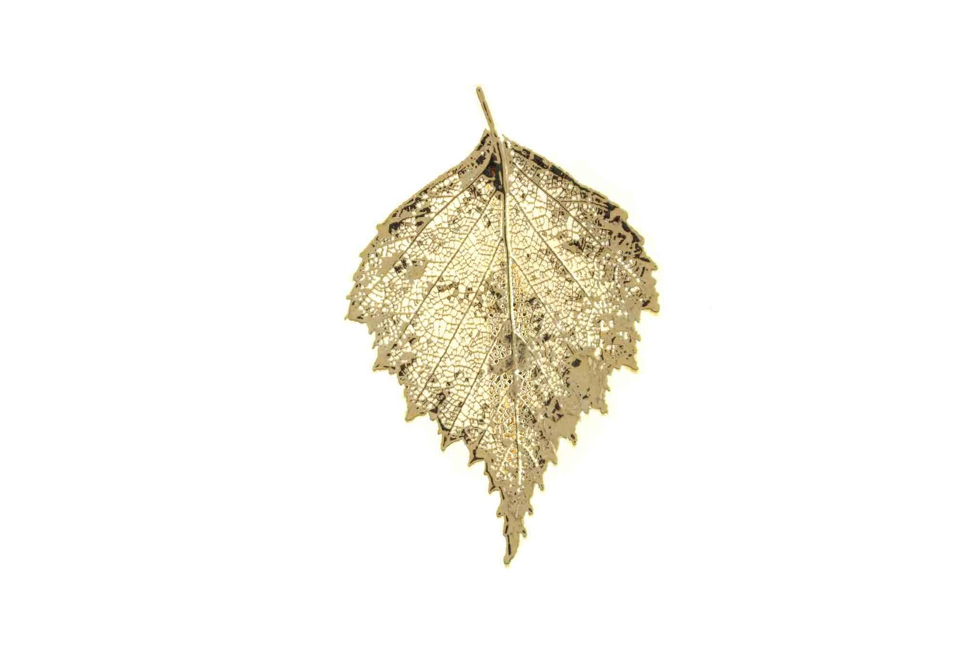 Real Birch Leaf Brooch In Gold - Arborvita