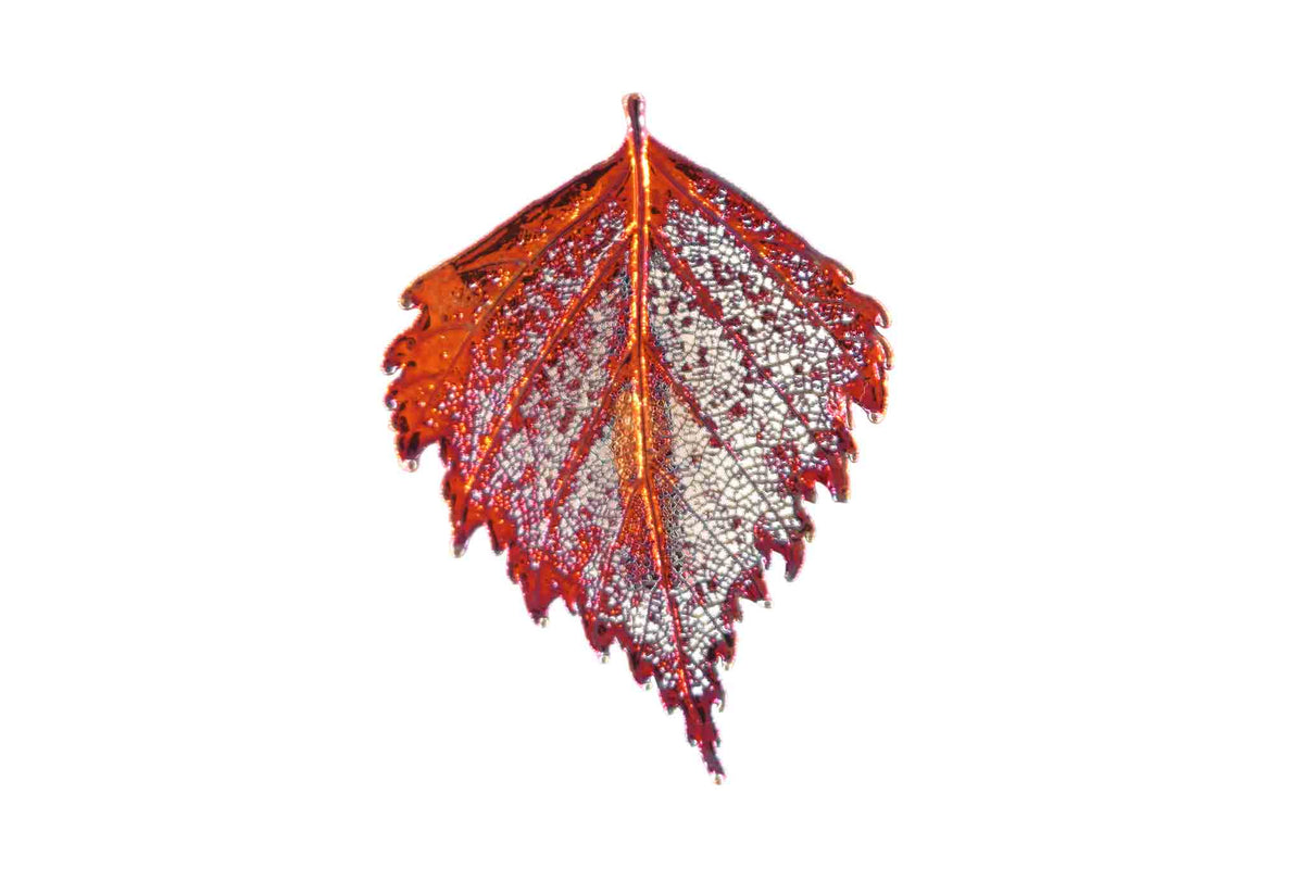Real Birch Leaf Brooch In Iridescent Copper - Arborvita