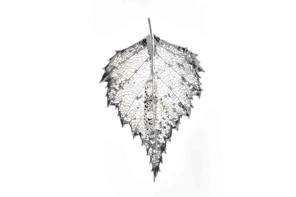 Real Birch Leaf Brooch In Silver - Arborvita