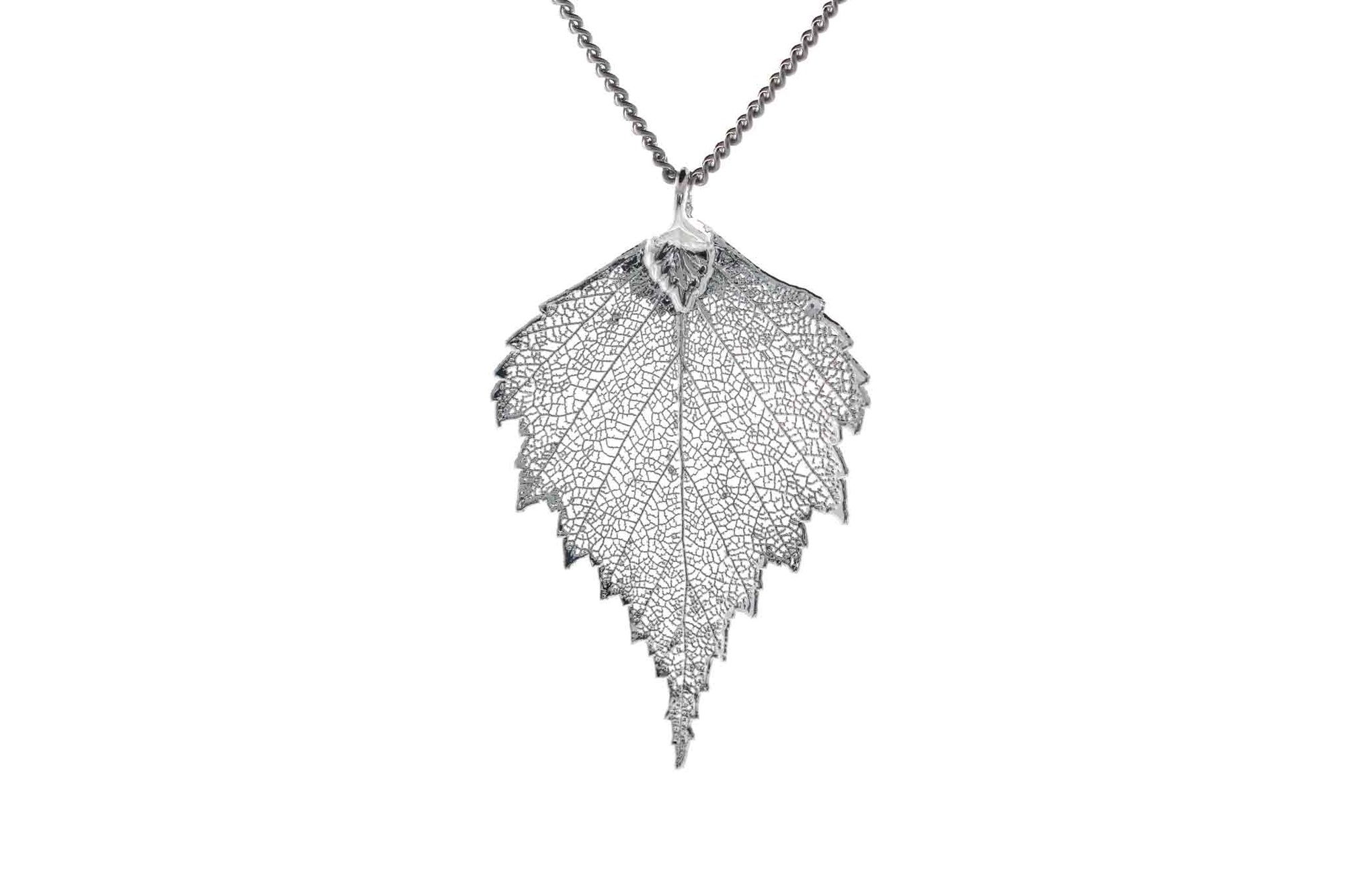 Real Birch Leaf Necklace In Silver
