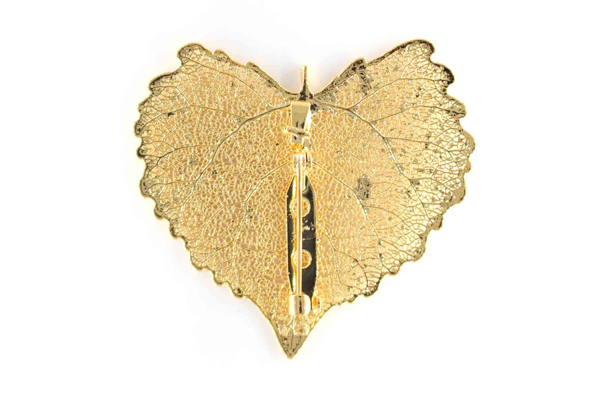 Real Cottonwood Leaf Brooch In Gold Back - Arborvita