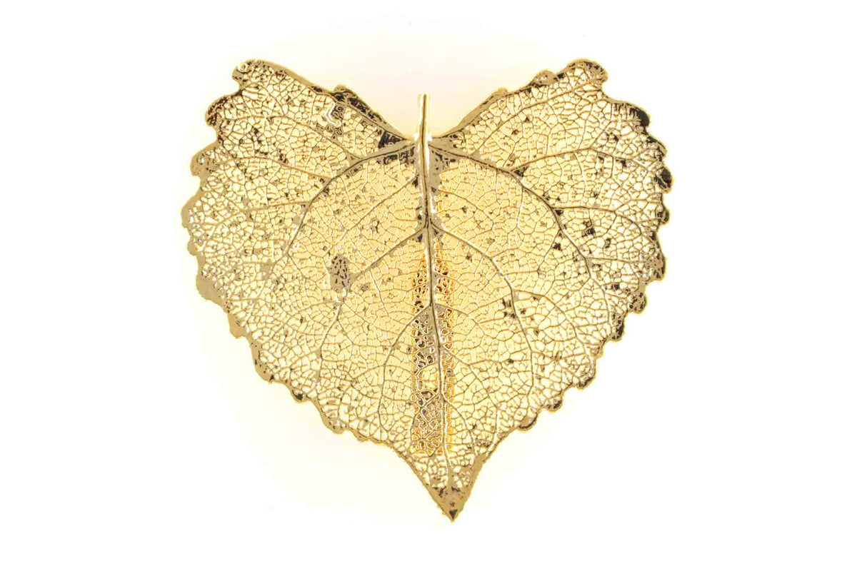 Real Cottonwood Leaf Brooch In Gold - Arborvita