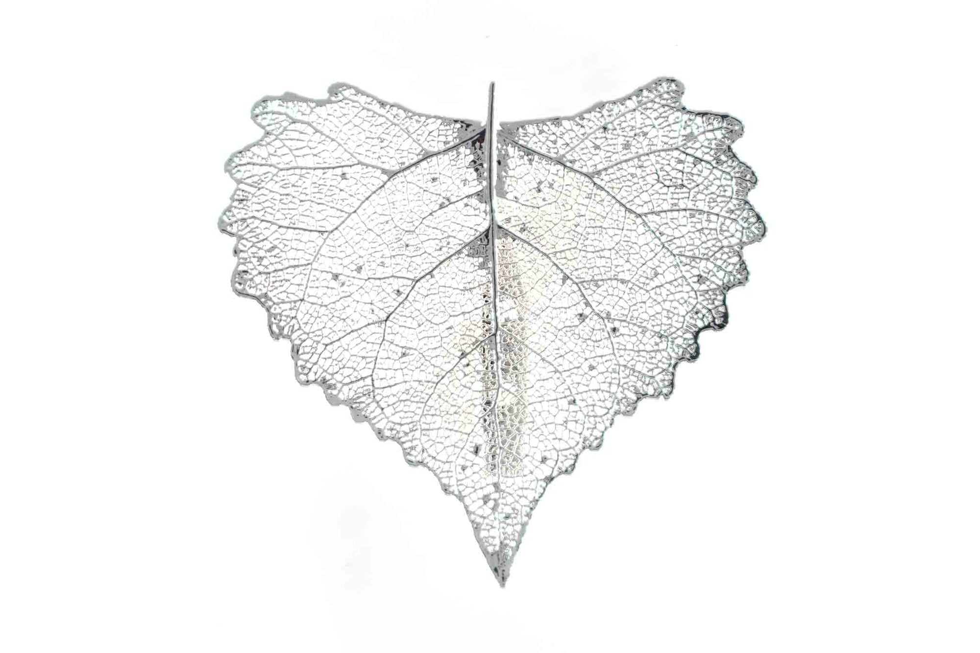 Real Cottonwood Leaf Brooch In Silver - Arborvita