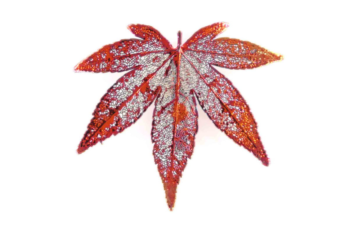 Real Japanese Maple Leaf Brooch In Iridescent Copper - Arborvita