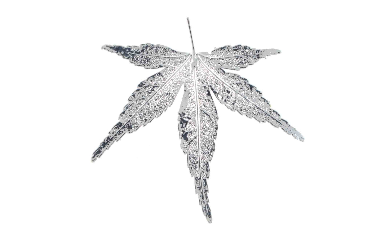 Real Japanese Maple Leaf Brooch In Silver - Arborvita