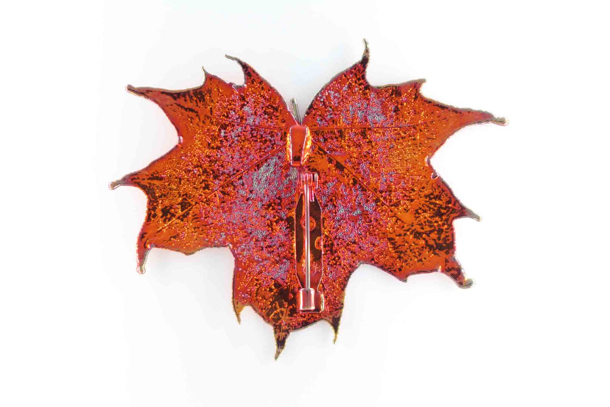 Real Sugar Maple Leaf Brooch In Iridescent Copper Back - Arborvita