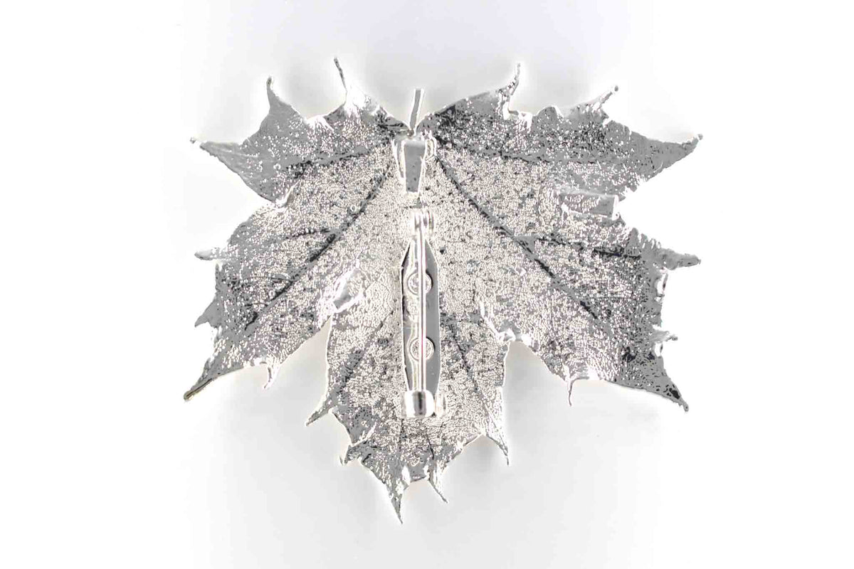 Real Sugar Maple Leaf Brooch In Silver Back - Arborvita