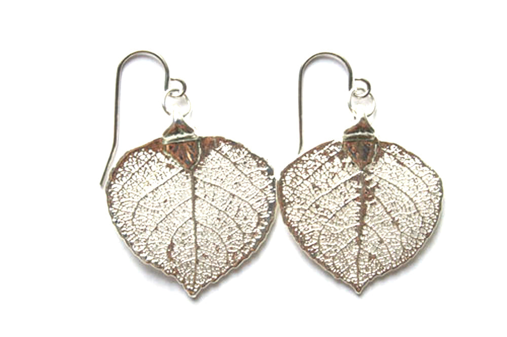 Real Aspen leaf silver earrings - Arborvita Real leaf jewellery
