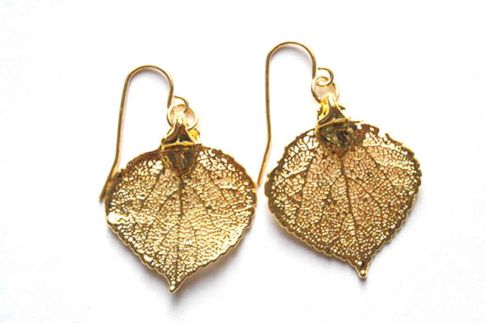 Real Aspen leaf gold earrings - Arborvita Real leaf jewellery