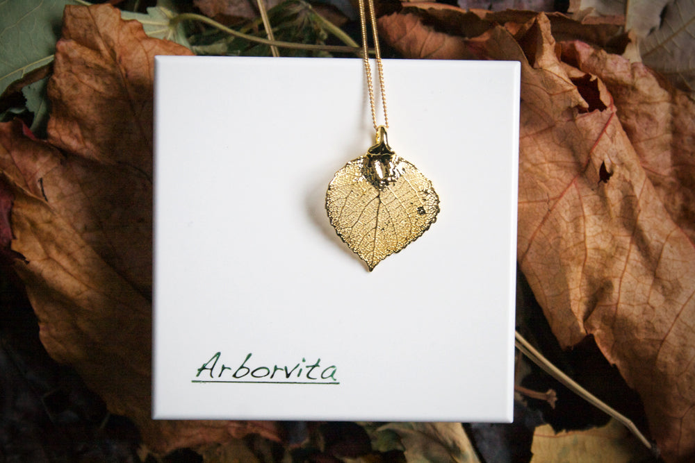 Real Aspen Leaf Necklace In Gold With Jewellery Box