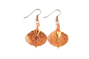 Real Aspen leaf rose gold earrings.