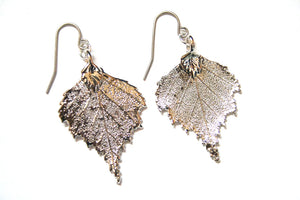 Real Birch Leaf Silver Earrings