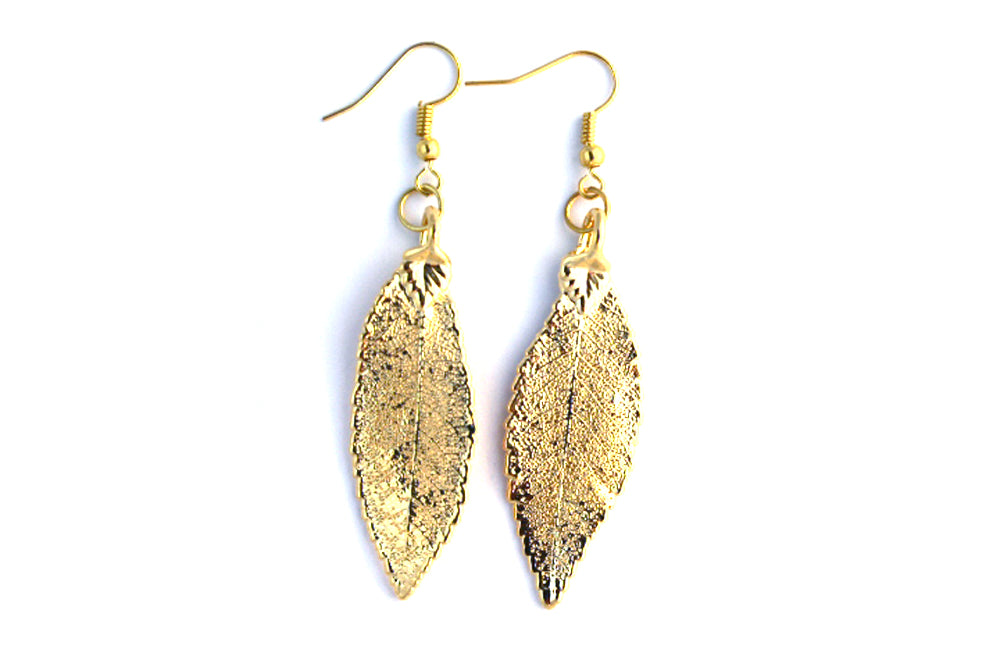 Real Elm leaf gold earrings - Arborvita Real leaf jewellery