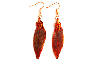 Real Elm leaf iridescent copper earrings - Arborvita Real leaf jewellery