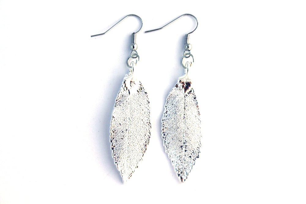 Real Elm leaf silver earrings.
