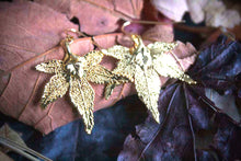 Real Japanese Maple leaf gold earrings