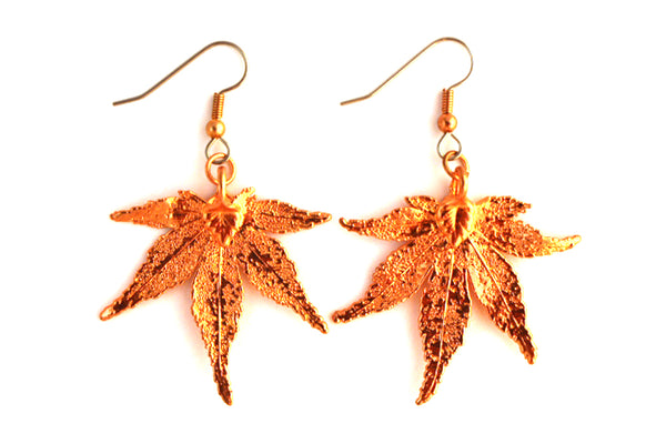 Real Japanese Maple leaf rose gold earrings.