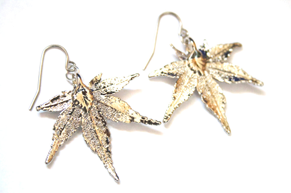 Real Japanese Maple Leaf Silver Earrings - Arborvita Real leaf jewellery