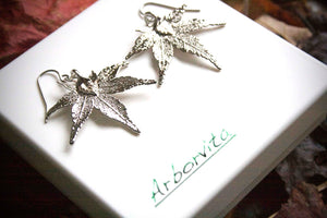 Real Japanese Maple Leaf Silver Earrings