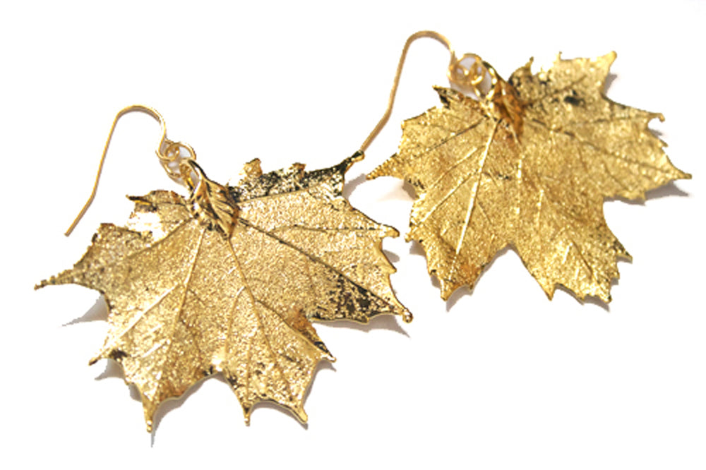 Real Maple leaf gold earrings - Arborvita Real leaf jewellery