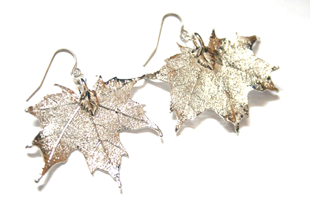 Real Maple leaf silver earrings - Arborvita Real leaf jewellery