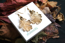 Real Oak leaf gold earrings