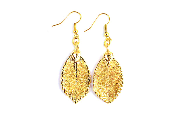 Real Rose leaf gold earrings