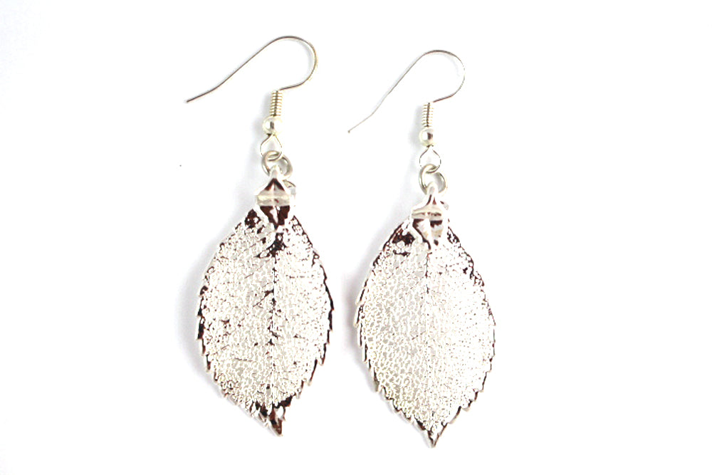 Real Rose leaf silver earrings