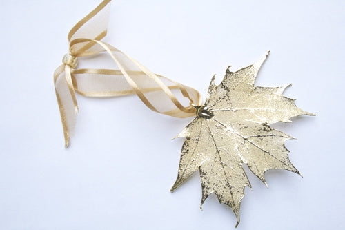 Real Maple leaf gold ornament - Arborvita Real leaf jewellery