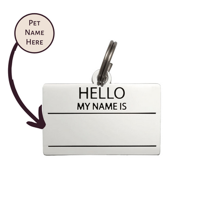 Pet ID Tag - Hello My Name is Blank - Silver