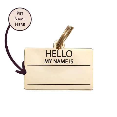Pet ID Tag - Hello My Name is Blank - Gold