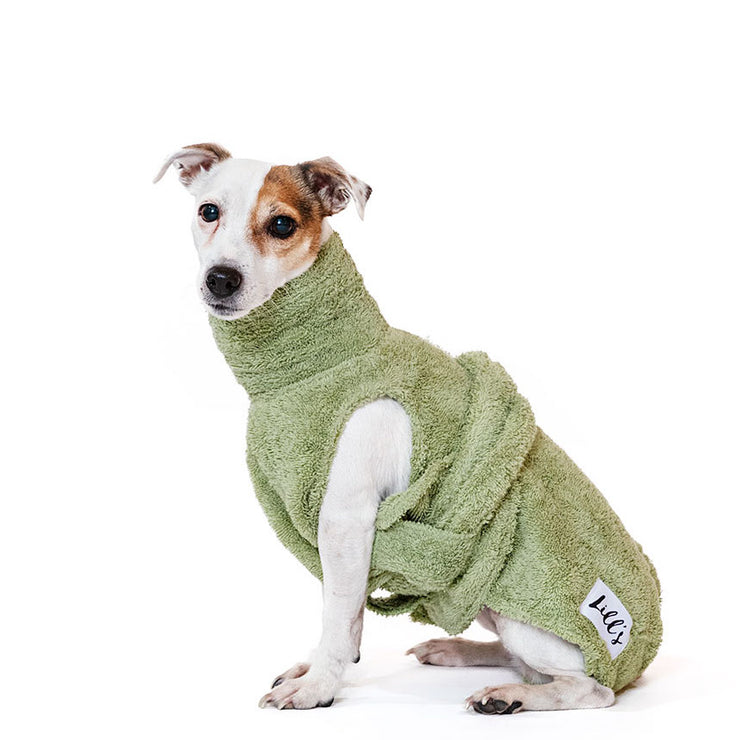Dog Drying Coat - Green Leaf