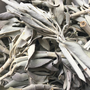 1 oz Loose White Sage || Incense - Incense - Cosmic Corner Savannah