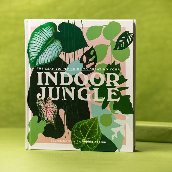 Penguin Random House Indoor Jungle - Plant Book - Book About Plants -  Good Read - Book - Reading - Women's Clothing Store - Women's Accessories - Gift Store - Ladies Boutique - O KOO RAN - Big Bear Lake California