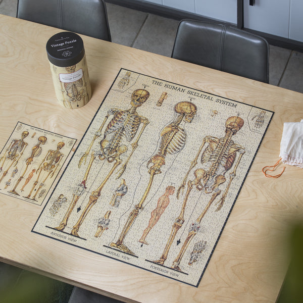 Cavallini Vintage Skeleton Puzzle - Vintage Skeletal System - Puzzle - Game - Gift - Women's Clothing Store - Women's Accessories - Ladies Boutique - O KOO RAN - Big Bear Lake California
