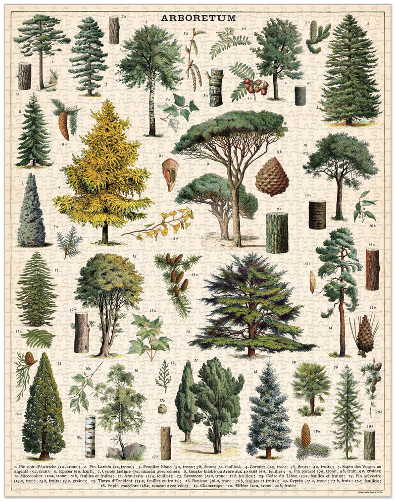 Cavallini Vintage Arboretum Puzzle - Vintage Trees - Puzzle - Game - Gift - Women's Clothing Store - Women's Accessories - Ladies Boutique - O KOO RAN - Big Bear Lake California