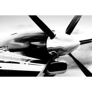 Artwork & Prints - King Air 250 Steven Greenwald Print