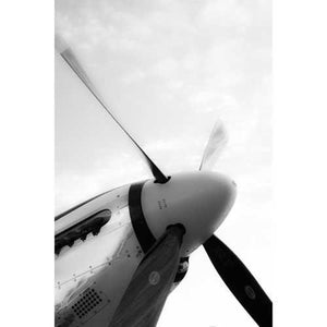 Artwork & Prints - P-51D Steven Greenwald Print