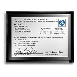 Plaques - Classic FAA License Plaque (Black Glass)