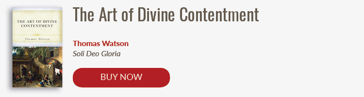 Buy Now: The Art of Divine Contentment
