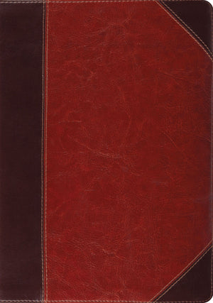 ESV Study Bible (TruTone, Brown/Cordovan, Portfolio Design) by ESV (9781433503795) Reformers Bookshop