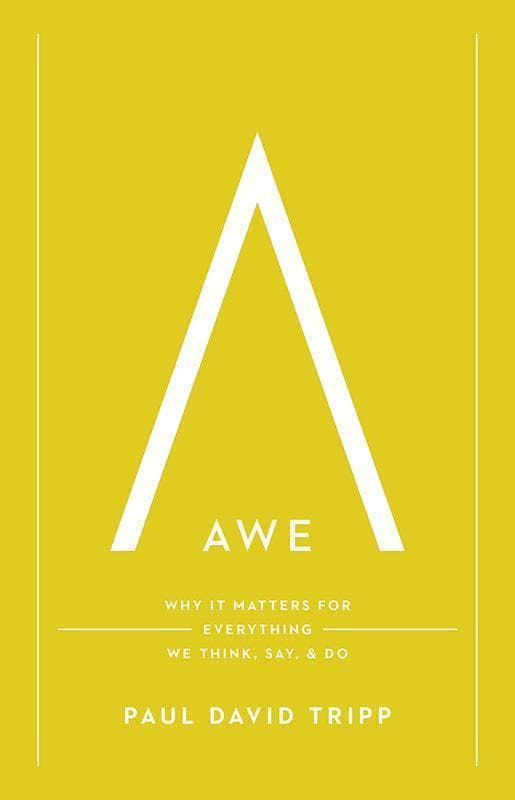 9781433547072-Awe: Why It Matters for Everything We Think, Say, and Do-Tripp, Paul David