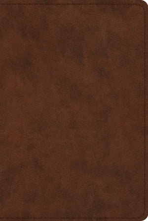 ESV Study Bible, Personal Size (TruTone, Brown) by ESV (9781433547621) Reformers Bookshop