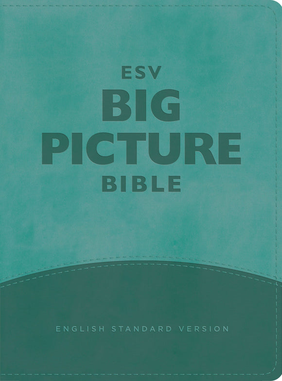 ESV Big Picture Bible: Teal Trutone
